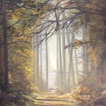 Original oil painting of 'Washed with Sunlight' by Artist Kirsten McIntosh of Kirsten McIntosh Art.